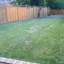 grass cut in Bracknell