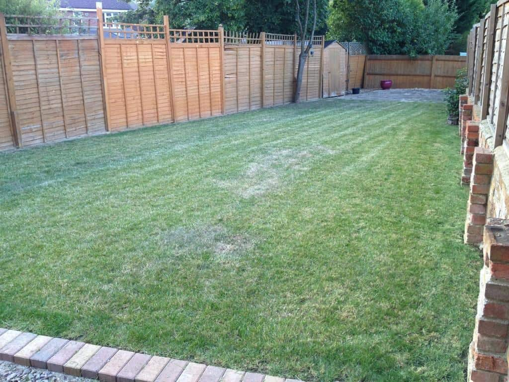 Garden maintenance Bracknell - grass cut