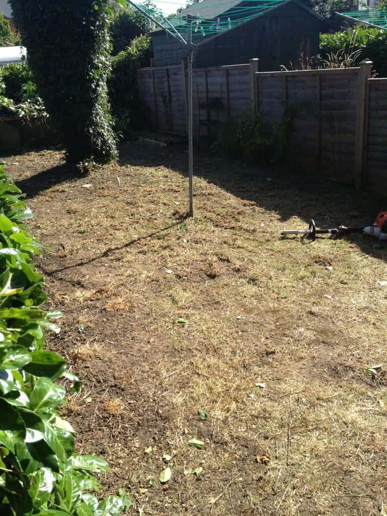 Garden in need
