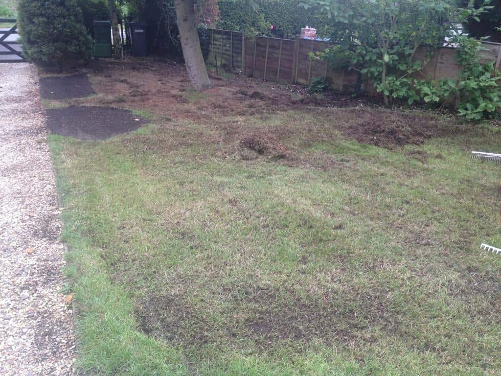 Front garden lawn being scarified