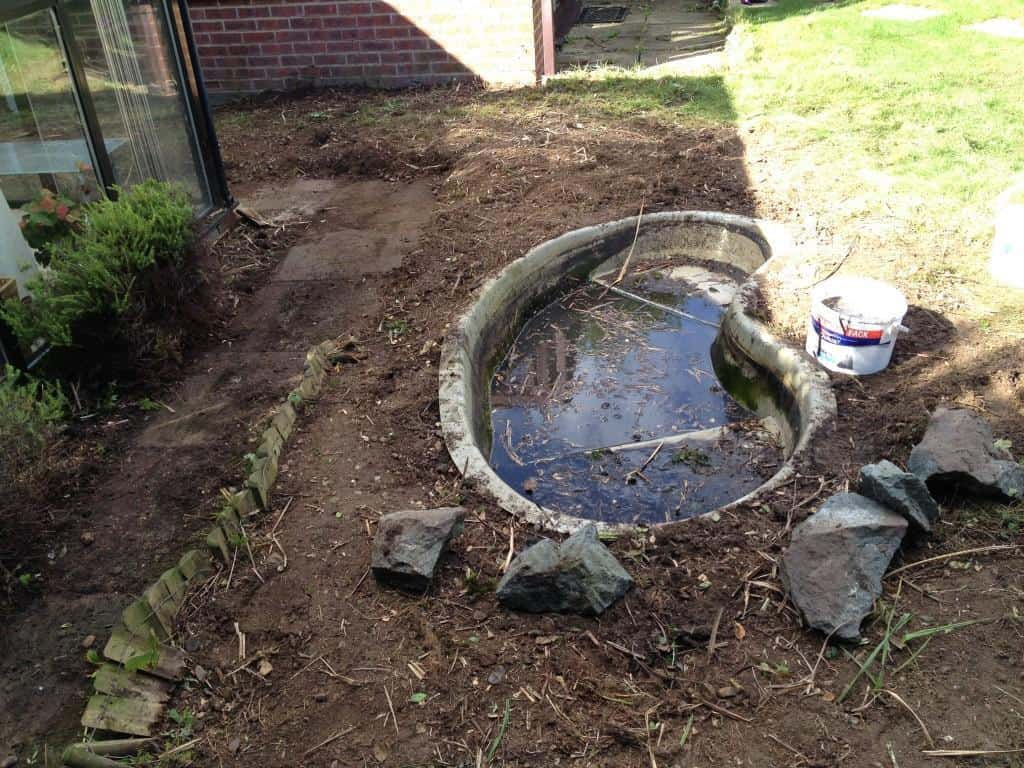 Garden pond area clear up