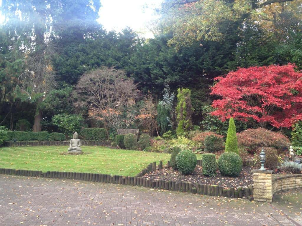 autumn leaf clearance