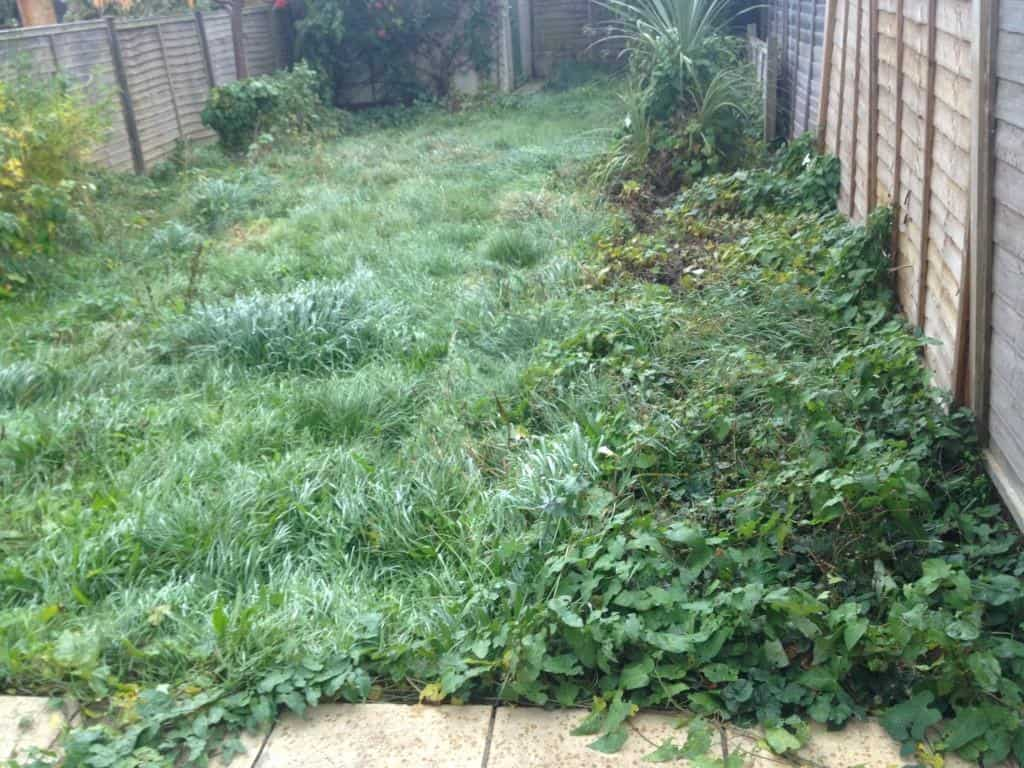 caversham garden maintenance