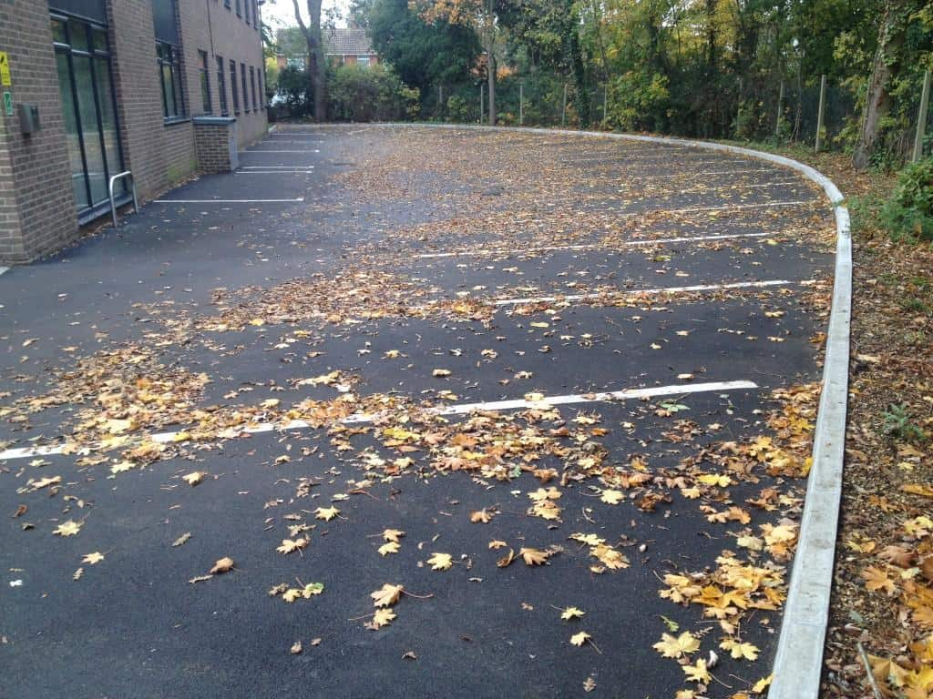 Commercial garden and ground services - looking after your businesses