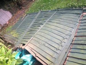 Tidy Gardens fence repair service