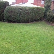 garden cleared and hedges trimmed