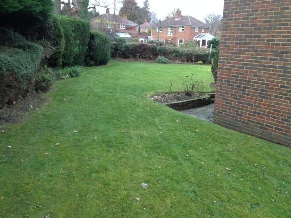 garden tidied up, autumn garden maintenance