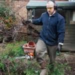 Paul Tidy Gardens tree clearance
