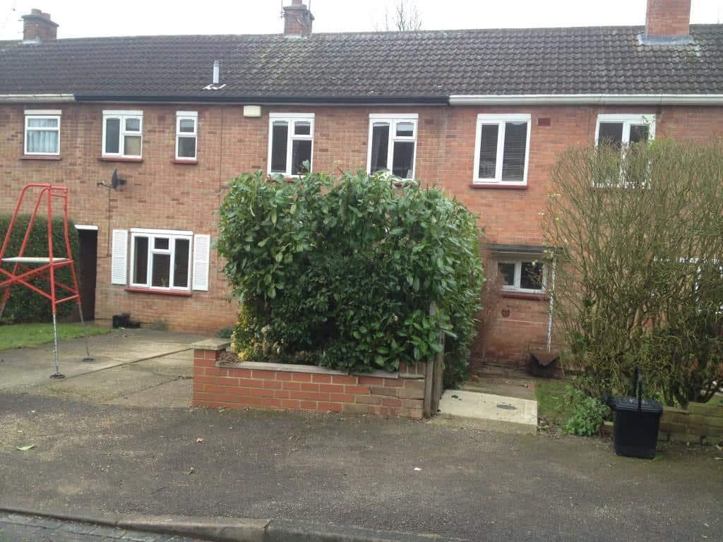 Hedge cut, Maidenhead  - first one in 2014