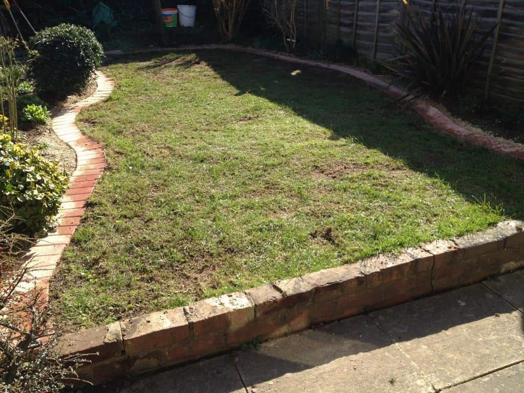 lawn edging service