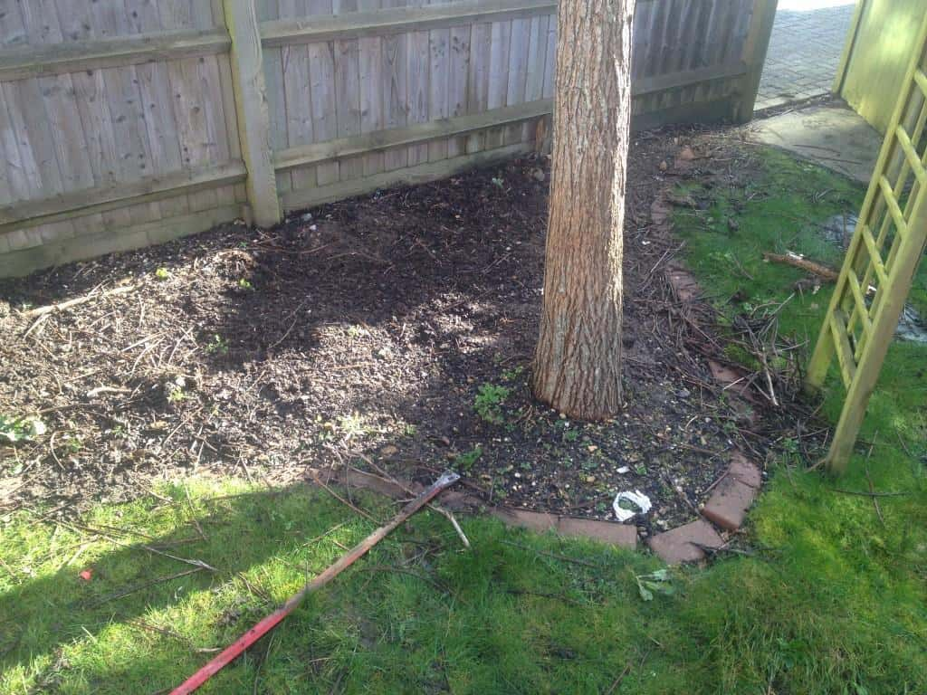 before lawn edging and turfing