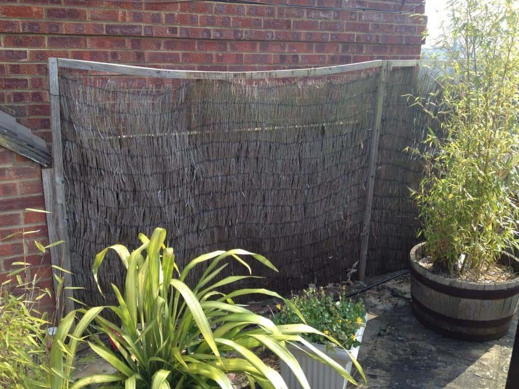 Garden bamboo screening installation