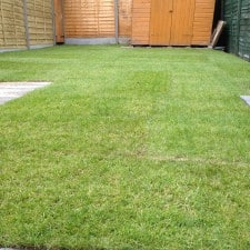 turfing service
