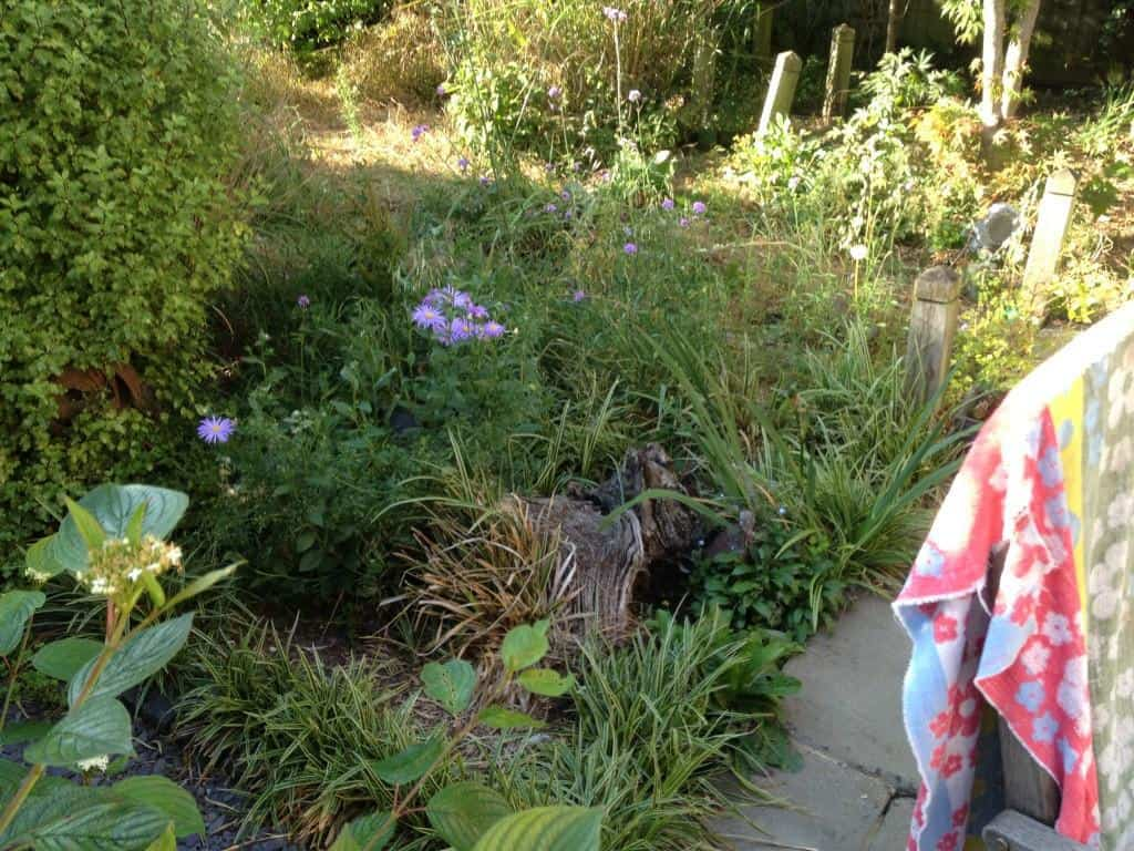 clearing turfing garden makeover