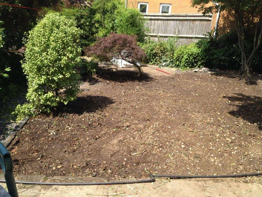 garden cleared