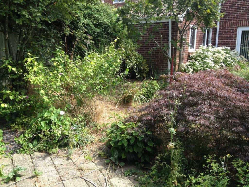 garden clearing and turfing before