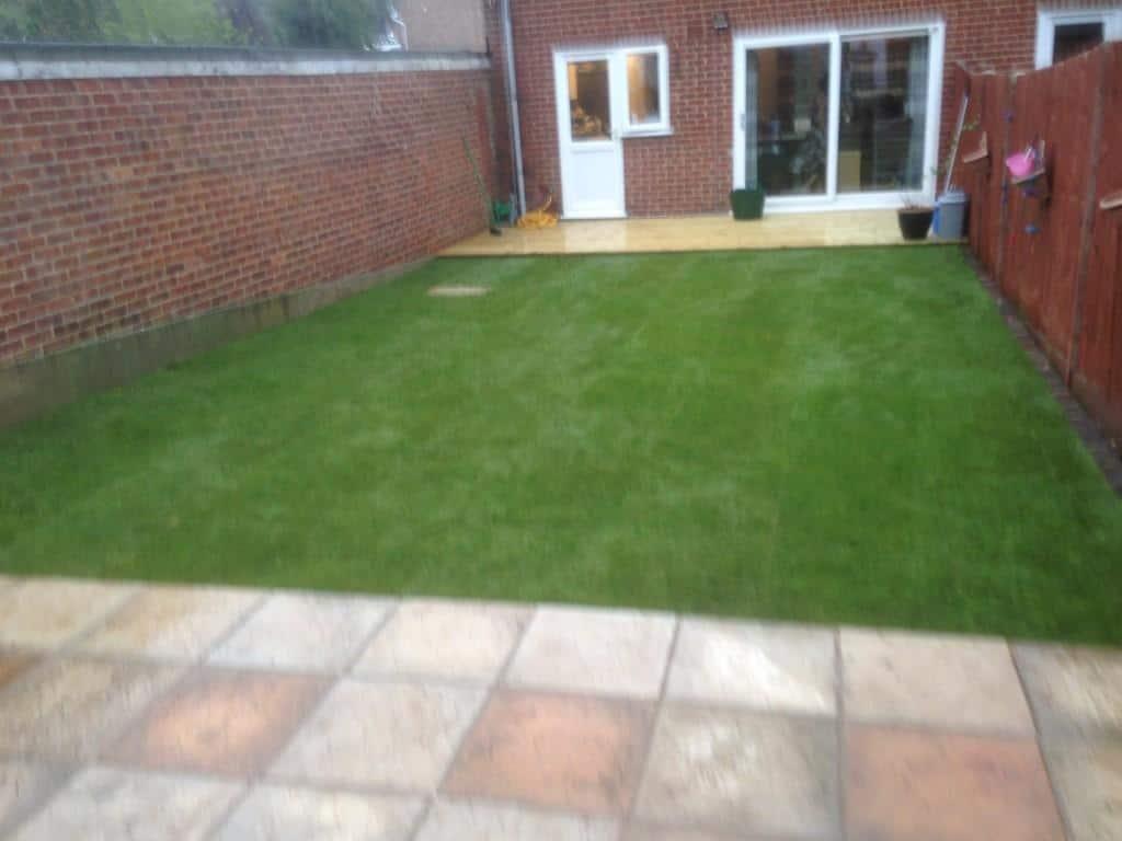 backn garden transformed