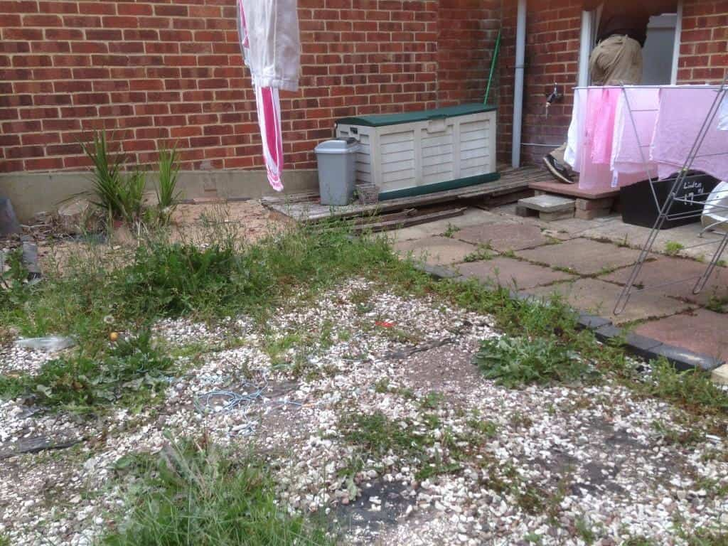 old garden to be landscaped