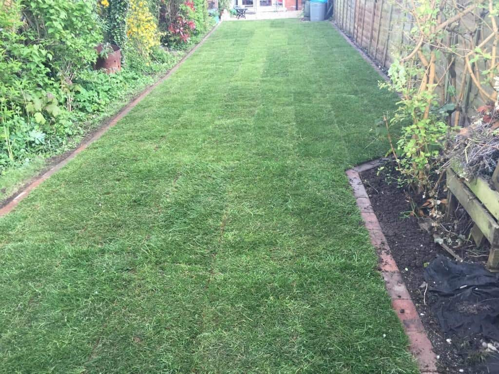 Lawn Edging and new turf Done
