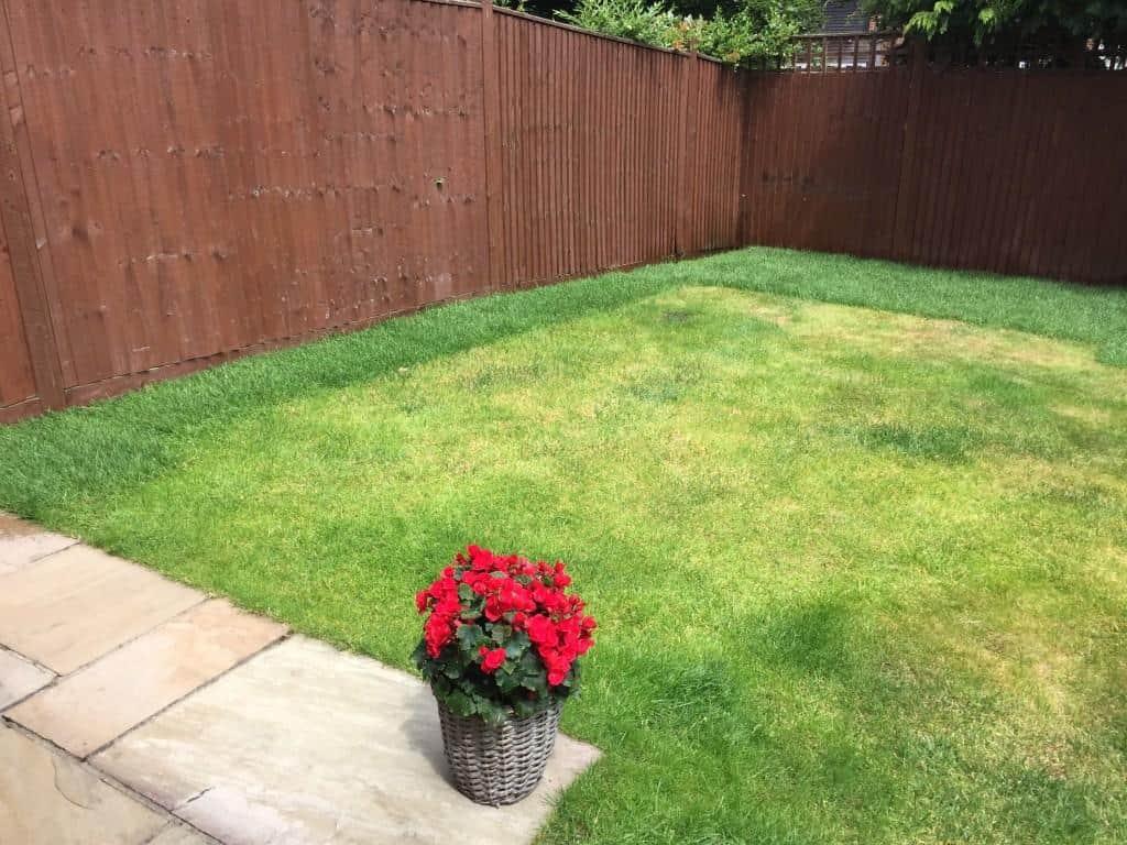 lawn repair. Returfed around the perimeter