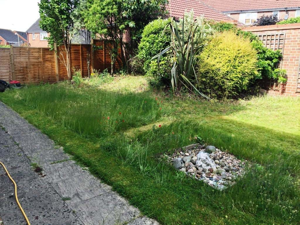 back garden to be returfed. Turfing service