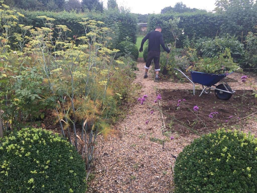 Garden raised beds and vegetable garden tidy up