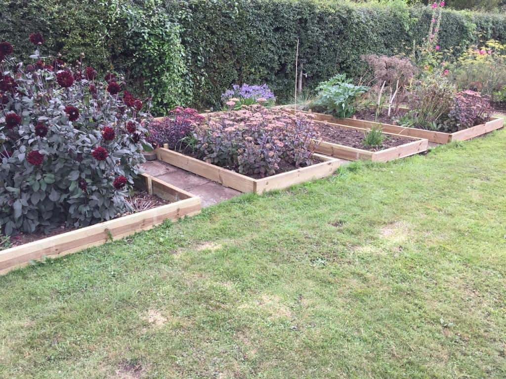 raised beds redone