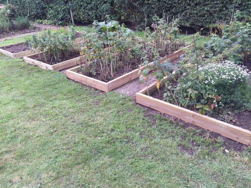 Garden raised beds and vegetable garden tidy up
