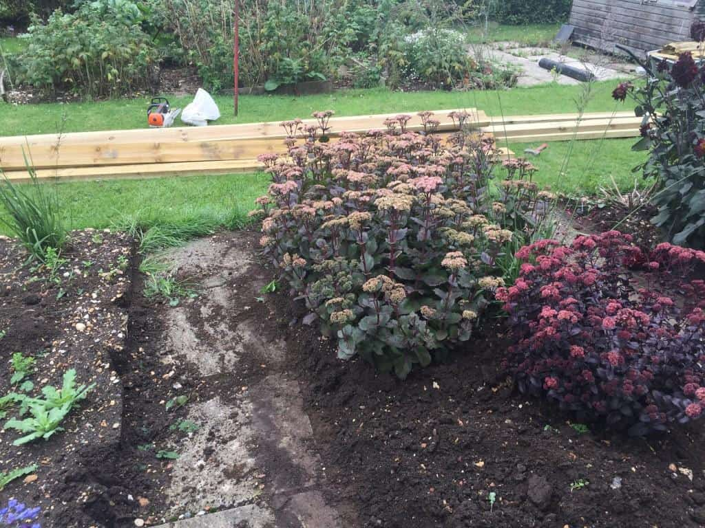 raised bed to be created