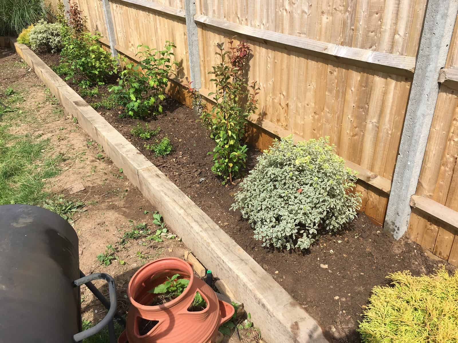 garden planting in Reading