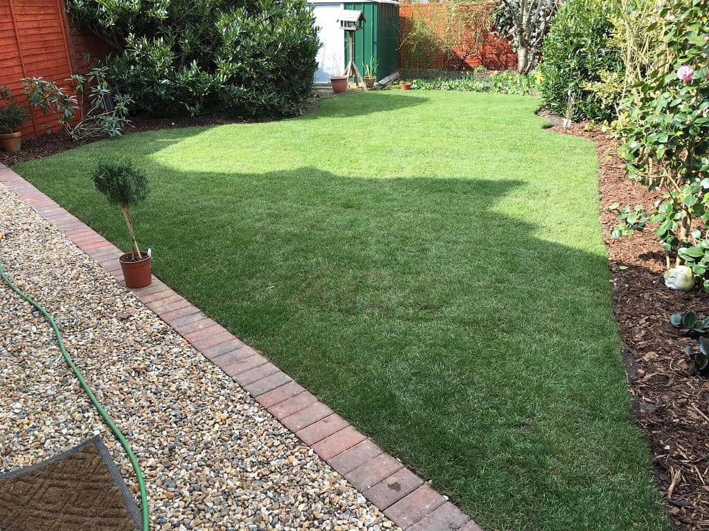 Laid new lawn, edged an area between gravel and lawn.