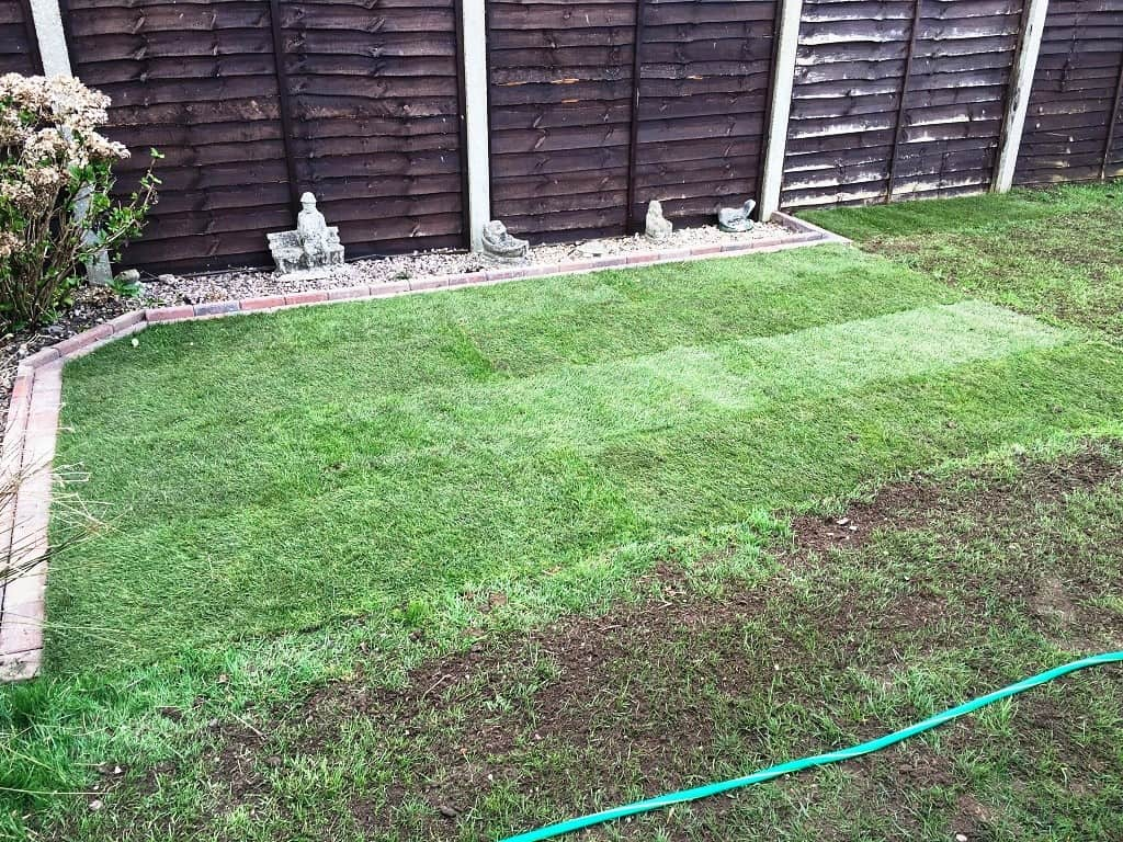 veg bed turned into lawn