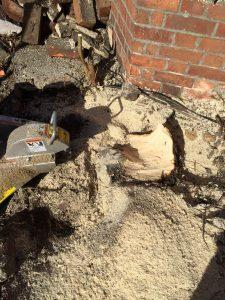 Tree  stump grinding / removal service in Reading