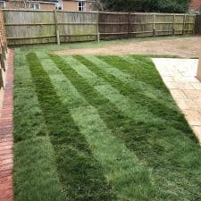 Lawn scarifying and seeding