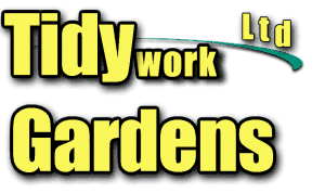 We can look after your environment  -> gardening and cleaning service