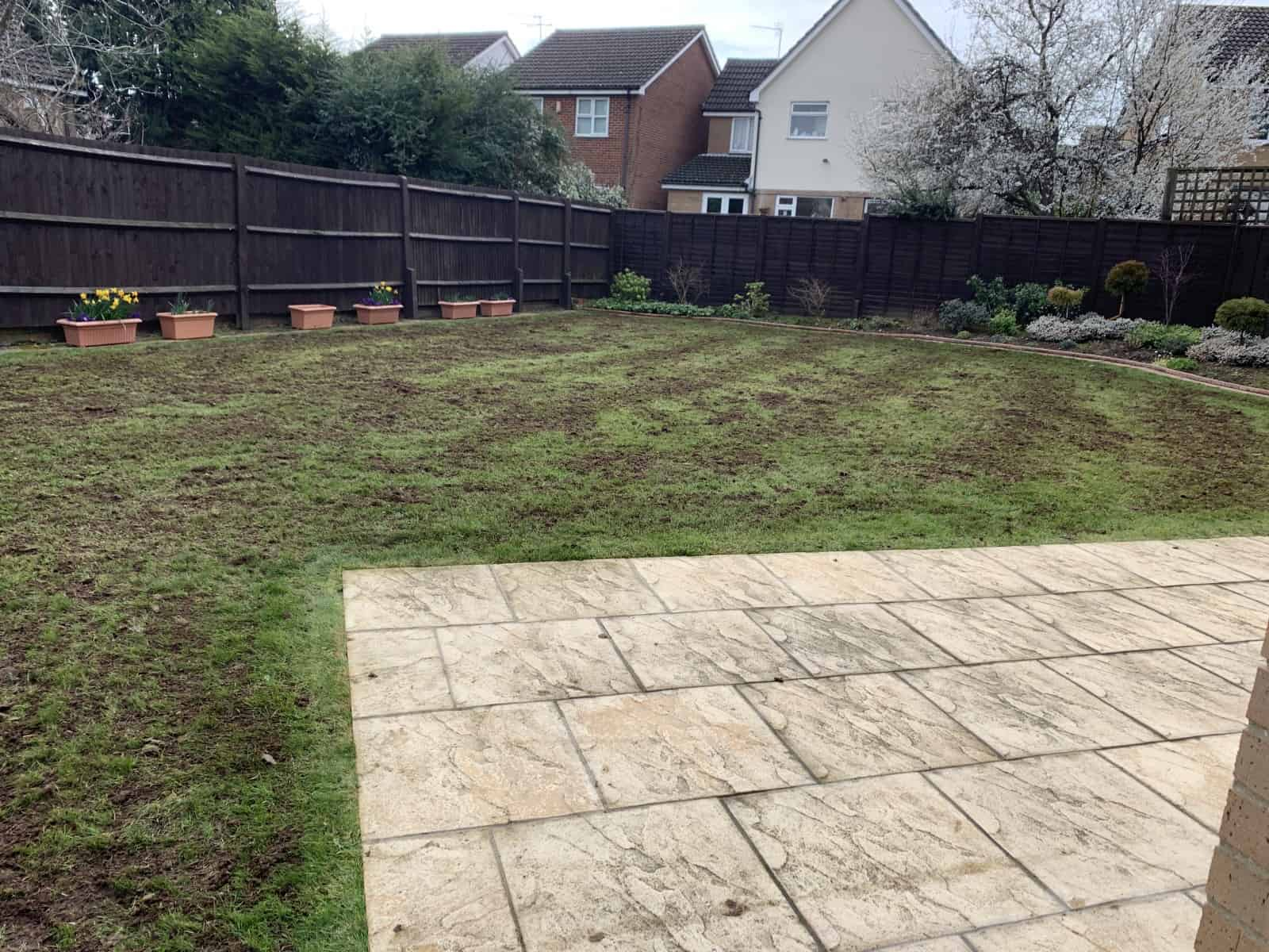 Mechanical lawn treatments - aeration and scarification