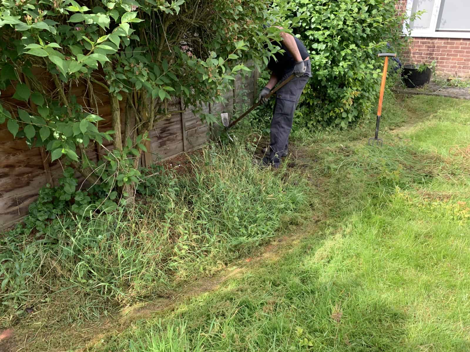 Garden tidy up - lots of weeding !