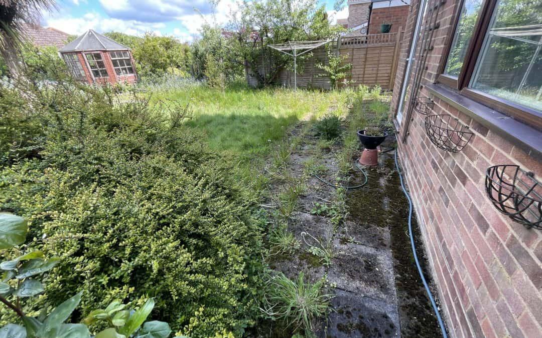 One days worth of work in a garden